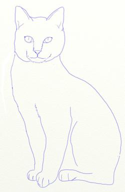 Нарисовать кот белый-кот черный
