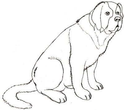 Сенбернар собака картинки