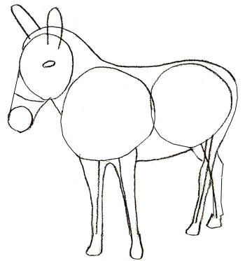 На рисовать осла