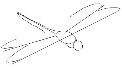 Как нарисовать стрекозу, шаг 3