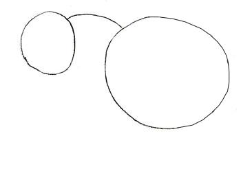 Как нарисовать слона, шаг 1