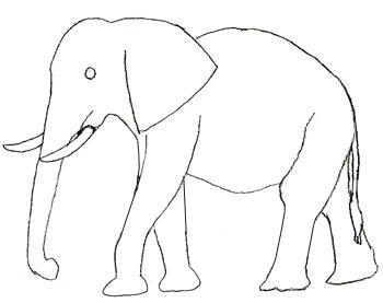 Как нарисовать слона, шаг 4