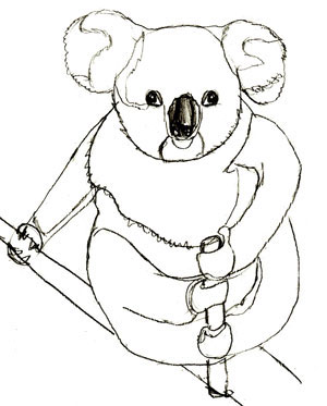 Как нарисовать коалу, шаг 6