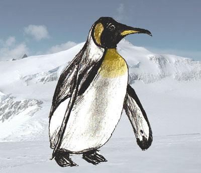 Рисовать пингвина довольно
