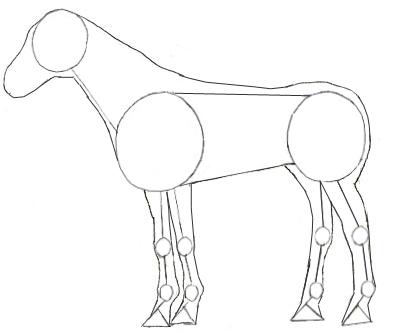 Как нарисовать лошадь, шаг 3
