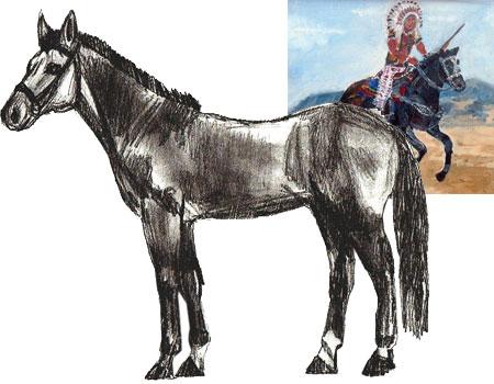 Как нарисовать лошадь поэтапно
