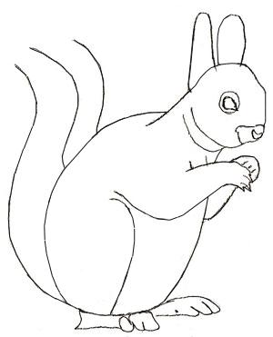 Рисунок белки карандашом, шаг 4