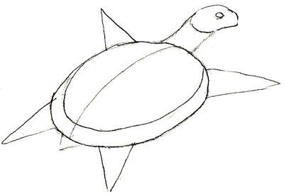 Как нарисовать черепаху, шаг 3