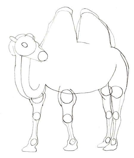 Как нарисовать верблюда, шаг 4