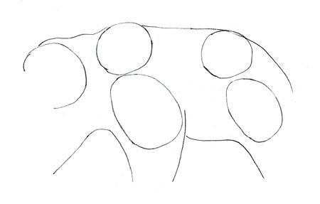 Как нарисовать медведя, шаг 2