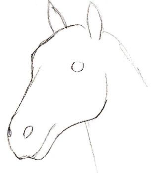 Рисунок голова лошади