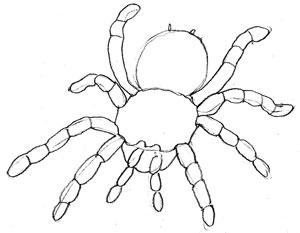 Как нарисовать паука, шаг 4