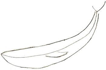 Как нарисовать кита, шаг 2