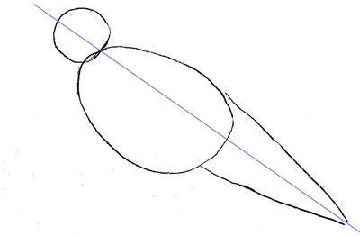 Как нарисовать ворону, шаг 1