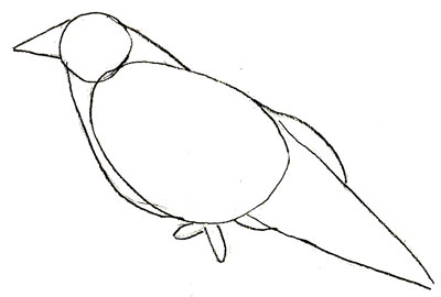 Как нарисовать ворону, шаг 2
