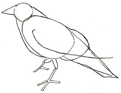 Как нарисовать ворону, шаг 3