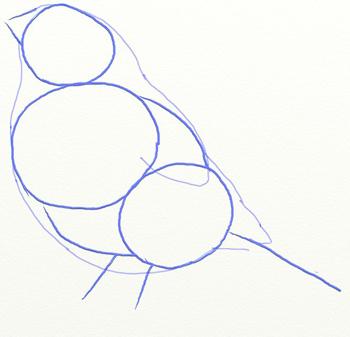 Как нарисовать снегиря, шаг 3