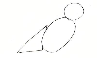 Как нарисовать воробья, шаг 1