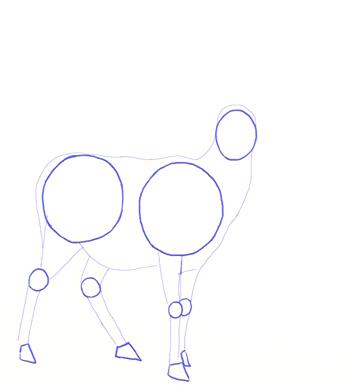 Как нарисовать оленя, шаг 2