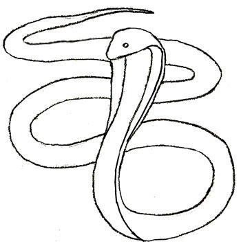 Як намалювати Змію