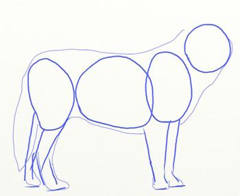 Как нарисовать волка, шаг 2