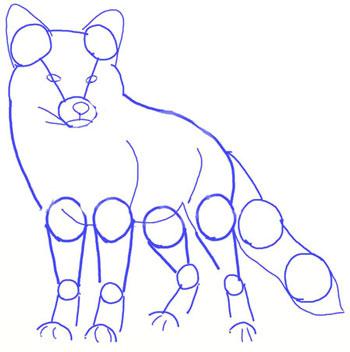 Рисунок лисы в деталях