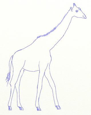 Как нарисовать жирафа, шаг 5