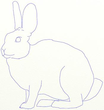 Как нарисовать зайца, шаг 5