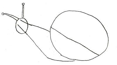 Как нарисовать улитку, шаг 2