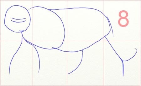 Как нарисовать тигра, шаг 1