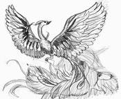 Рисунки птиц - Жар птица