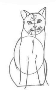 рисовать кота