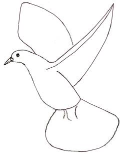 Как научиться рисовать голубя, шаг 3