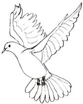стенгaзеты ко дню птиц