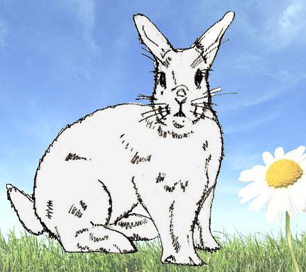 рисовать кролика