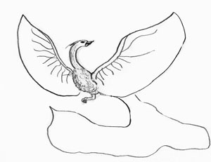 Как рисовать Жар-птицу, шаг 2