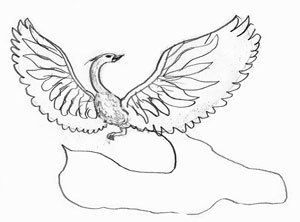 Как рисовать Жар-птицу, шаг 3