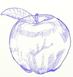 Как нарисовать яблоко, шаг 6
