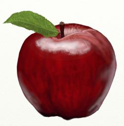 Как нарисовать яблоко, шаг 7