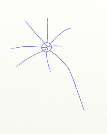 Как нарисовать лилию, шаг 2