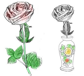 Рисунок розы карандашом