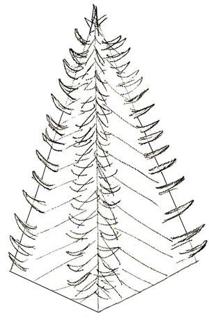 Рисунок новогодней елки, шаг 3