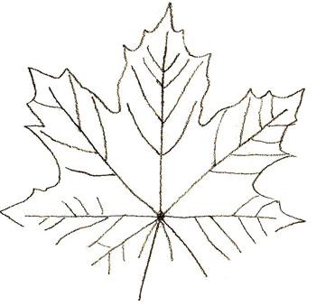 Как нарисовать листья, шаг 3