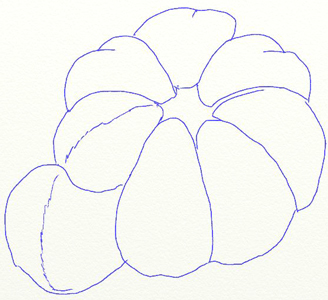 Рисунок мандарина, шаг 4