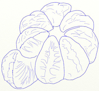 Рисунок мандарина, шаг 5