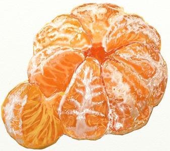 Рисунок мандарина, шаг 7