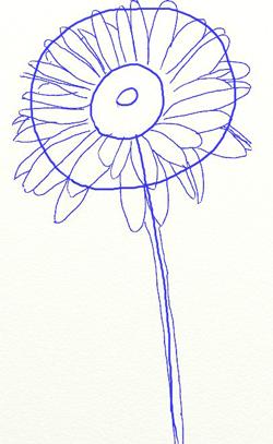 Как нарисовать ромашку, шаг 3