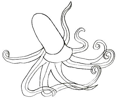 Как нарисовать осьминога, шаг 3