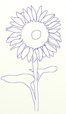Как нарисовать подсолнух, шаг 5
