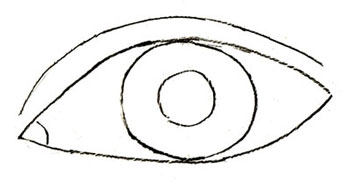 Как нарисовать глаза человека, шаг 5